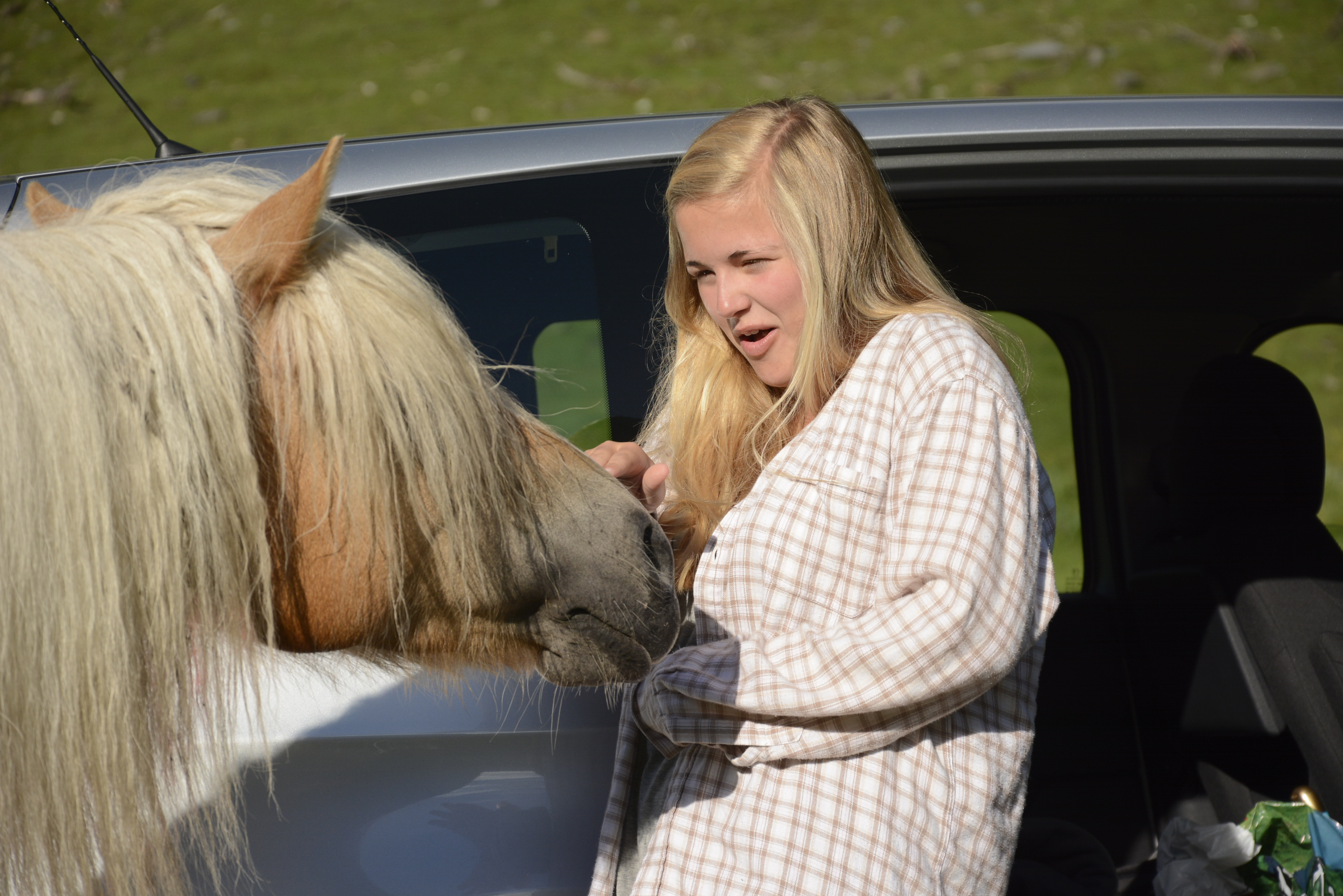 horse tries to take granola bar form girl