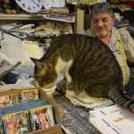 man and his cat in bookstore