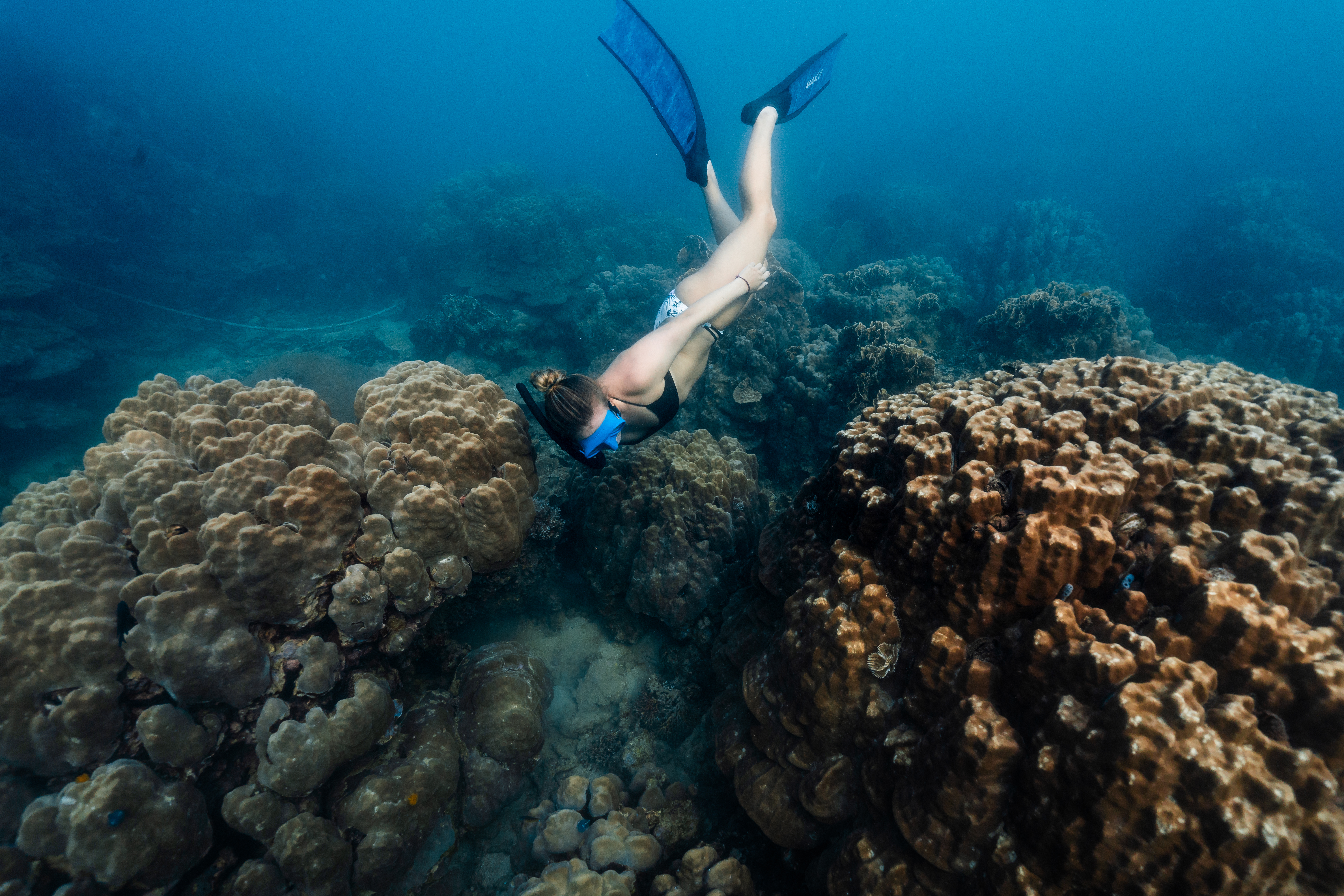 Girl diving close to coral
