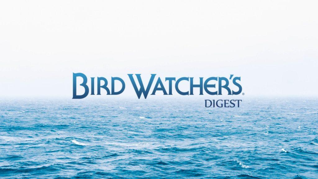 birdwatcher's digest interview